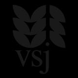 Verein für sozialpädagogische Jugendbetreuung e. v. Logo